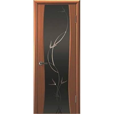 Ульяновская дверь Сириус-2 тёмный анегри