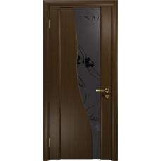 Дверь DioDoor Торелло венге черный триплекс Вьюнок матовый